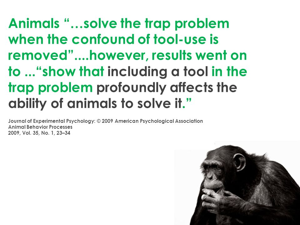 Animals …solve the trap problem when the confound of tool-use is removed ....however, results went on to... show that including a tool in the trap problem profoundly affects the ability of animals to solve it. Journal of Experimental Psychology: © 2009 American Psychological Association Animal Behavior Processes 2009, Vol.