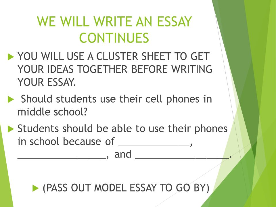 We write your essay for you