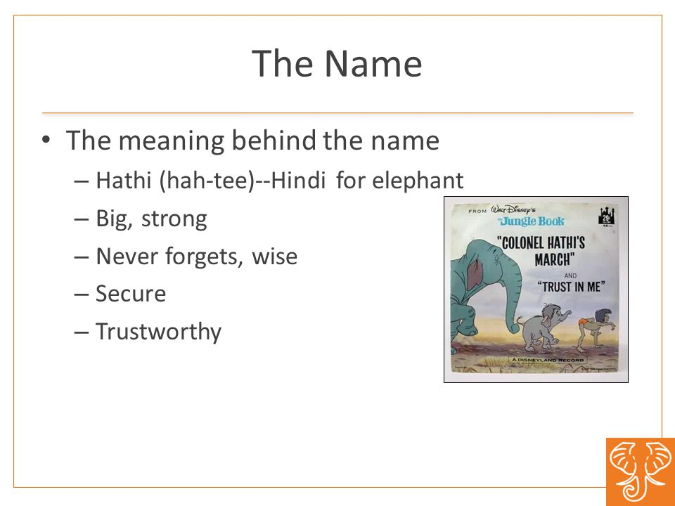 The Name The meaning behind the name – Hathi (hah-tee)--Hindi for elephant – Big, strong – Never forgets, wise – Secure – Trustworthy