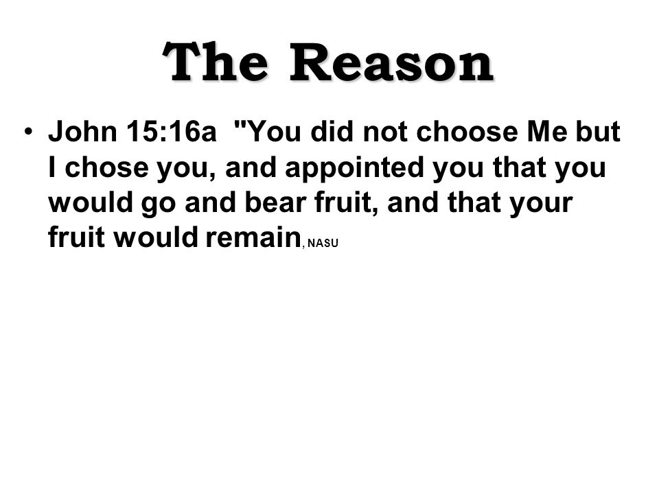 The Reason John 15:16a You did not choose Me but I chose you, and appointed you that you would go and bear fruit, and that your fruit would remain, NASU