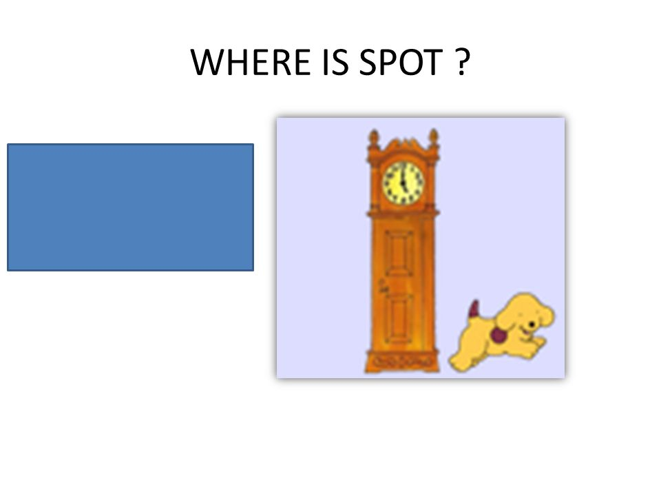 WHERE IS SPOT ? Spot is next to the clock.