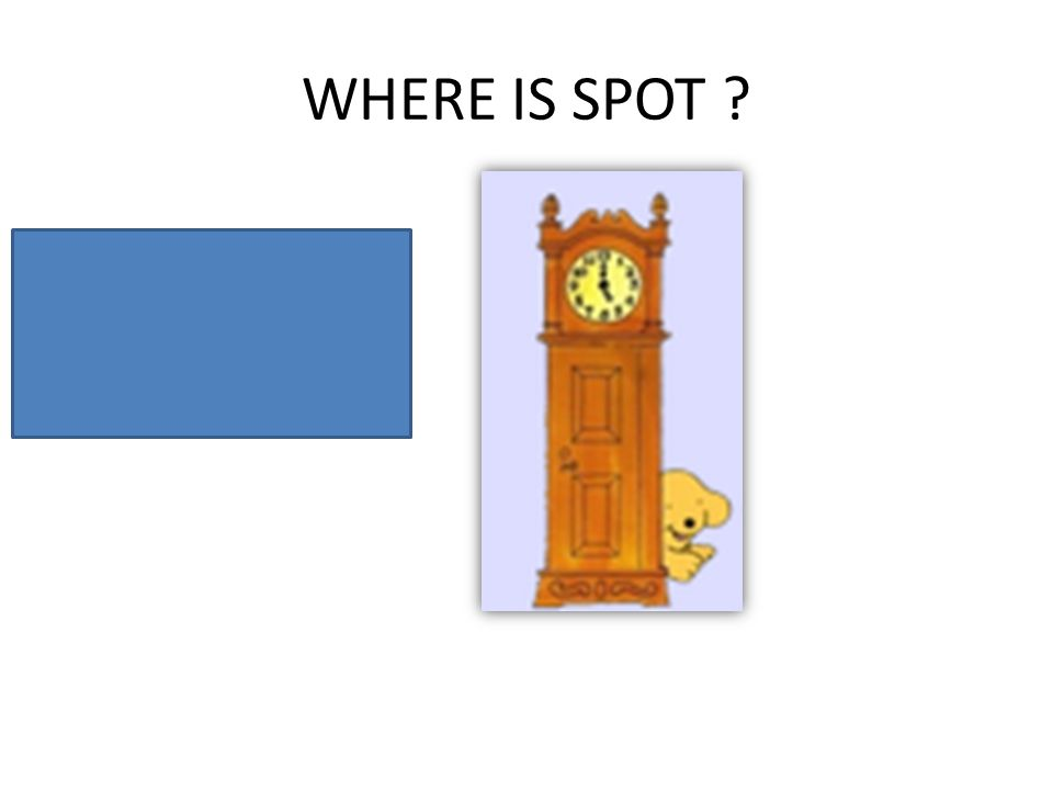 WHERE IS SPOT ? Spot is behind the clock.