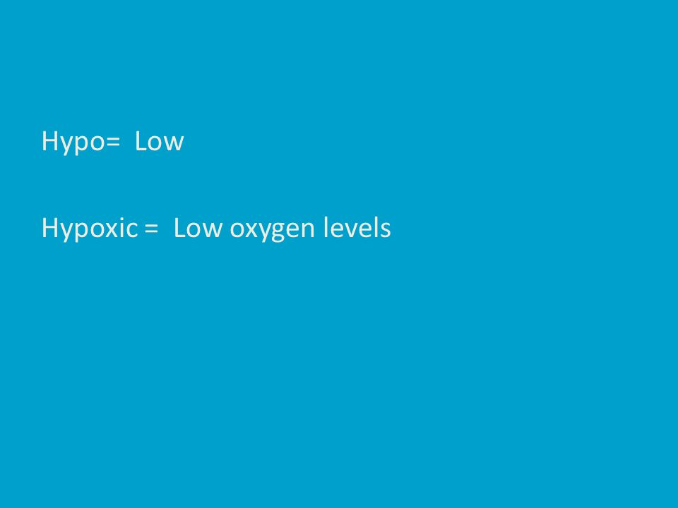 Hypo= Low Hypoxic = Low oxygen levels