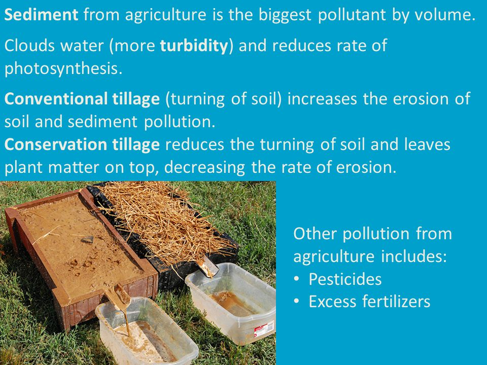 Sediment from agriculture is the biggest pollutant by volume. Clouds water (more turbidity) and reduces rate of photosynthesis. Conventional tillage (