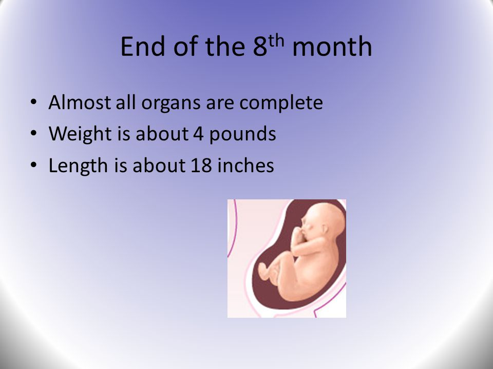 End of the 8 th month Almost all organs are complete Weight is about 4 pounds Length is about 18 inches