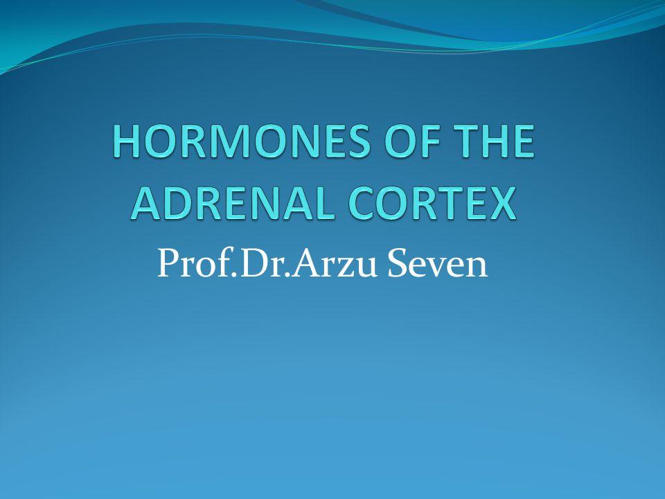 Prof.Dr.Arzu Seven