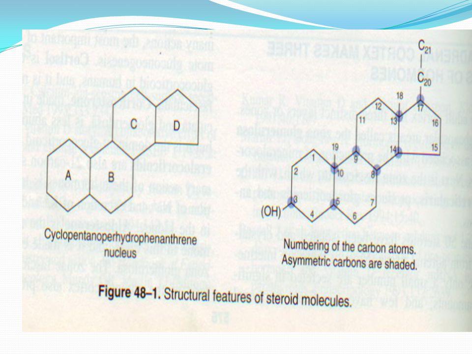 Glucocorticoids  21C Mineralocorticoids  21C Androgens  19C Estrogens  18C