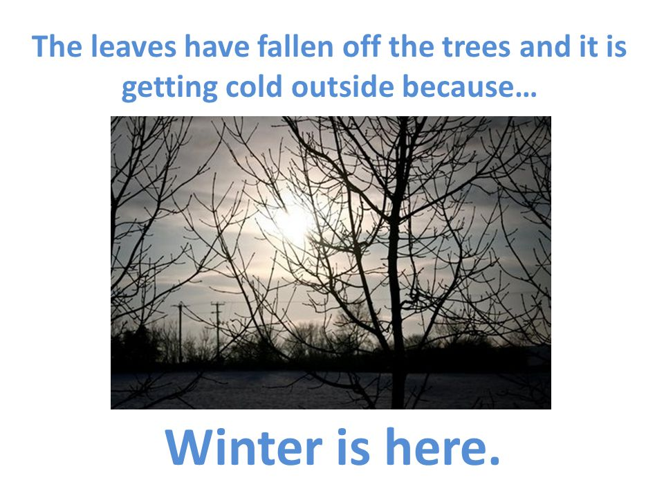 The leaves have fallen off the trees and it is getting cold outside because… Winter is here.
