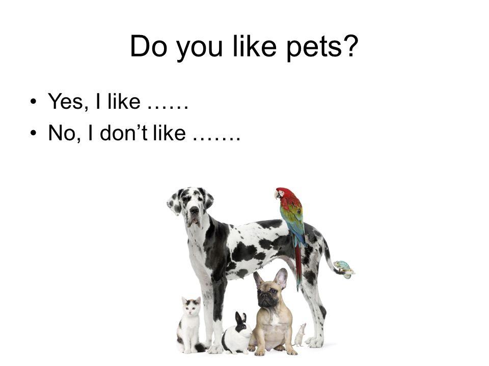 Do you like pets Yes, I like …… No, I don't like …….