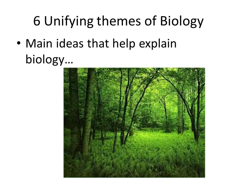6 Unifying themes of Biology Main ideas that help explain biology…