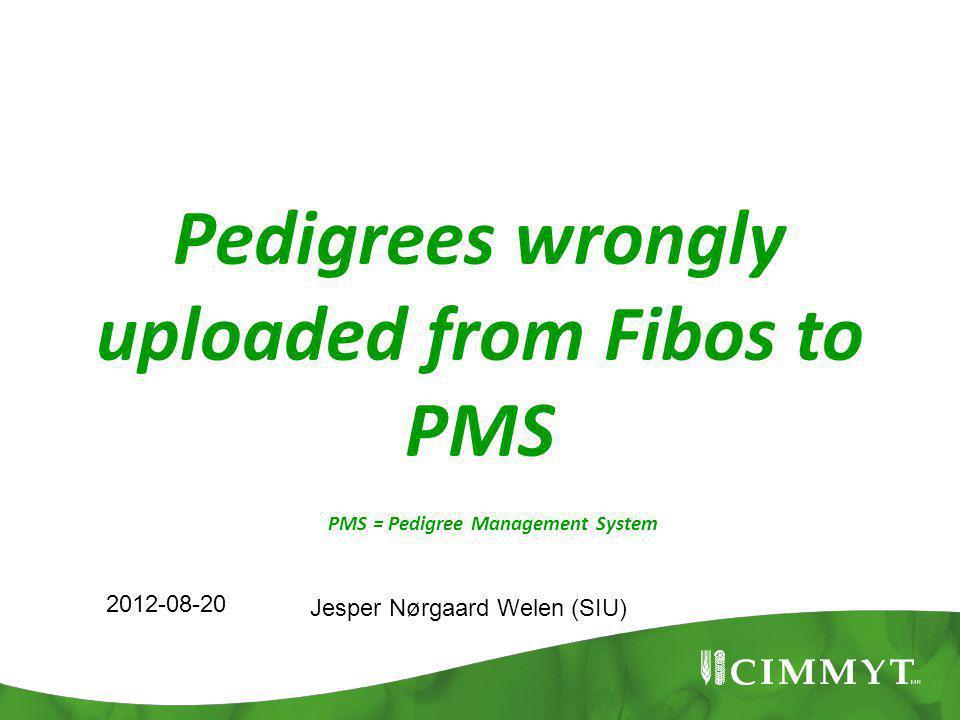 Pedigrees wrongly uploaded from Fibos to PMS 2012-08-20 Jesper Nørgaard Welen (SIU) PMS = Pedigree Management System