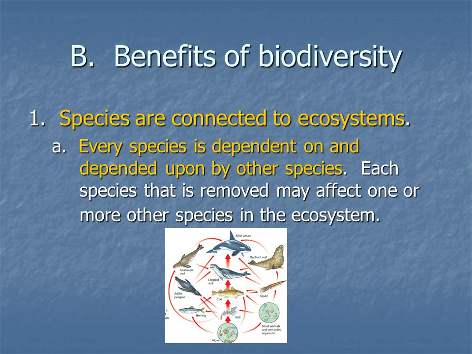 b.Some species are critical to the functioning of an ecosystem.