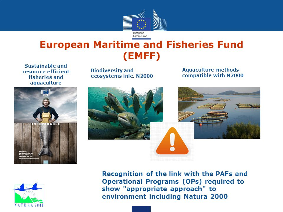 European Maritime and Fisheries Fund (EMFF) Sustainable and resource efficient fisheries and aquaculture Biodiversity and ecosystems inlc. N2000 Aquac
