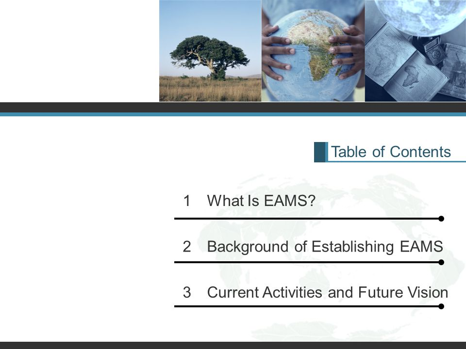 Table of Contents 1 What Is EAMS? 2 Background of Establishing EAMS 3 Current Activities and Future Vision