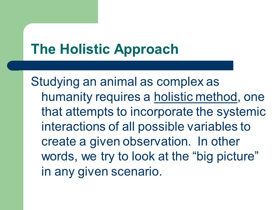 The Holistic Approach Studying an animal as complex as humanity requires a holistic method, one that attempts to incorporate the systemic interactions of all possible variables to create a given observation.