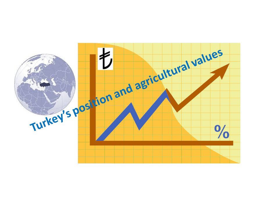 Presentation Content Turkey's position and agricultural values Development of seed cultivation and current situation Sectoral structuring and TSÜAB…..