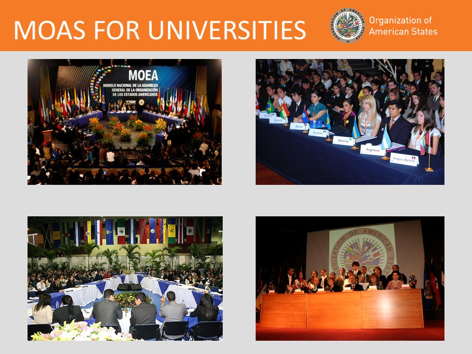MOAS FOR UNIVERSITIES
