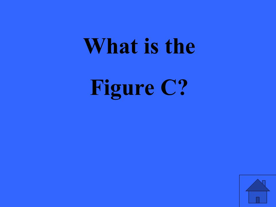 What is the Figure C?