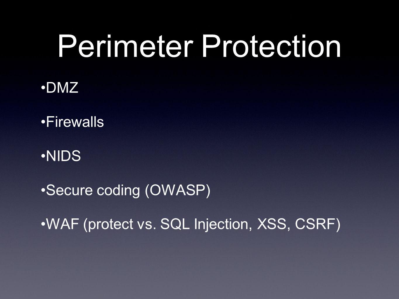 Perimeter Protection DMZ Firewalls NIDS Secure coding (OWASP) WAF (protect vs.