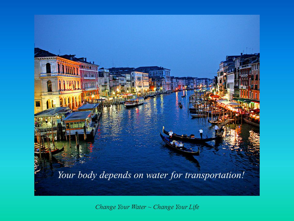Change Your Water ~ Change Your Life Your body depends on water for transportation!