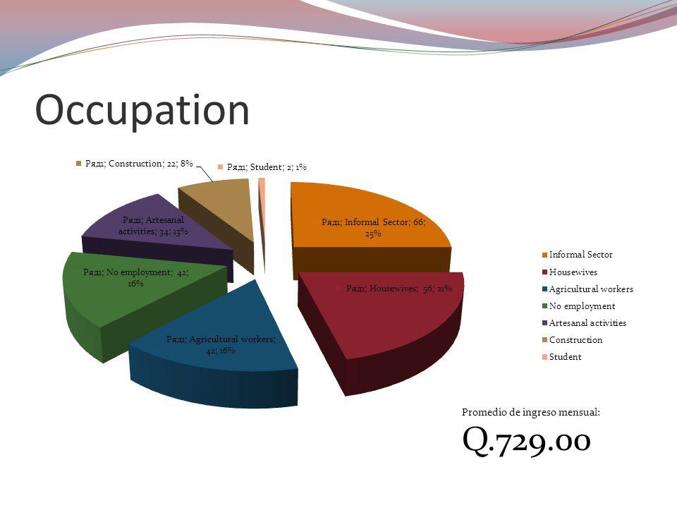 Occupation Promedio de ingreso mensual: Q.729.00