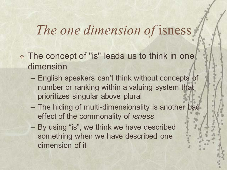 The one dimension of isness  The concept of is leads us to think in one dimension – English speakers can't think without concepts of number or ranking within a valuing system that prioritizes singular above plural – The hiding of multi-dimensionality is another bad effect of the commonality of isness – By using is , we think we have described something when we have described one dimension of it