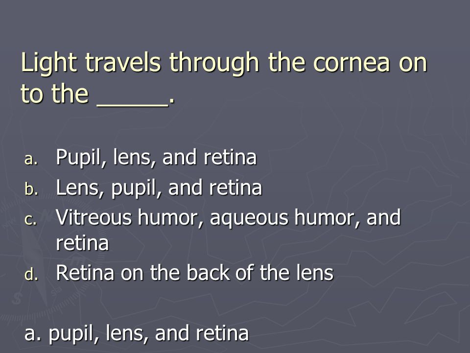 Light travels through the cornea on to the _____. a. Pupil, lens, and retina b. Lens, pupil, and retina c. Vitreous humor, aqueous humor, and retina d