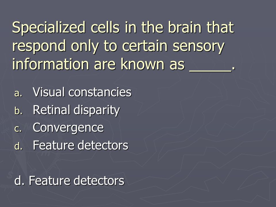 Specialized cells in the brain that respond only to certain sensory information are known as _____. a. Visual constancies b. Retinal disparity c. Conv
