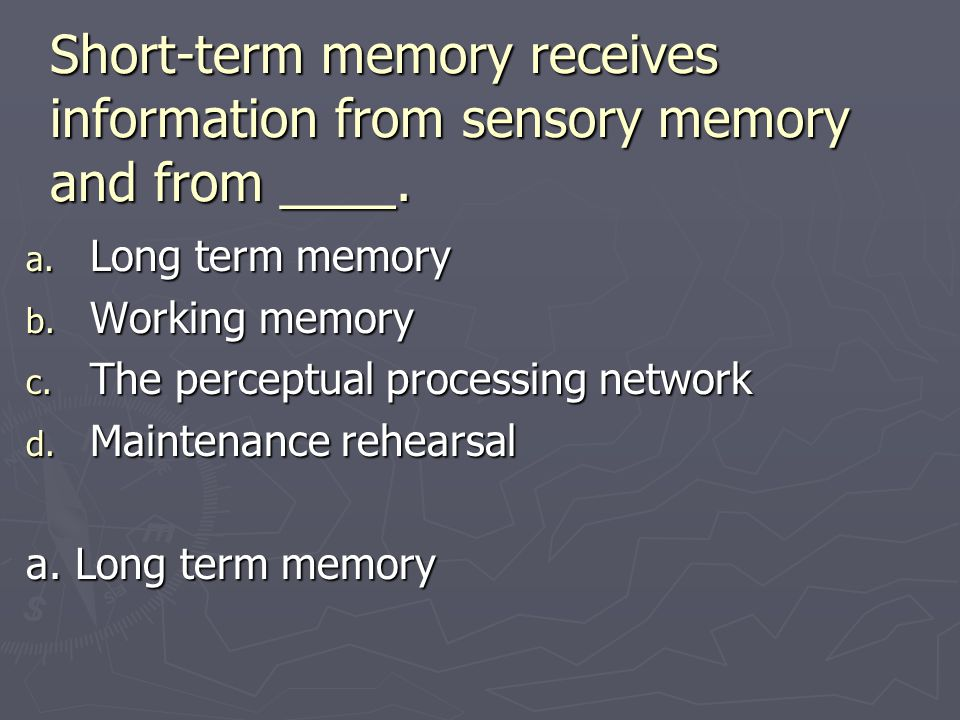 Short-term memory receives information from sensory memory and from ____. a. Long term memory b. Working memory c. The perceptual processing network d