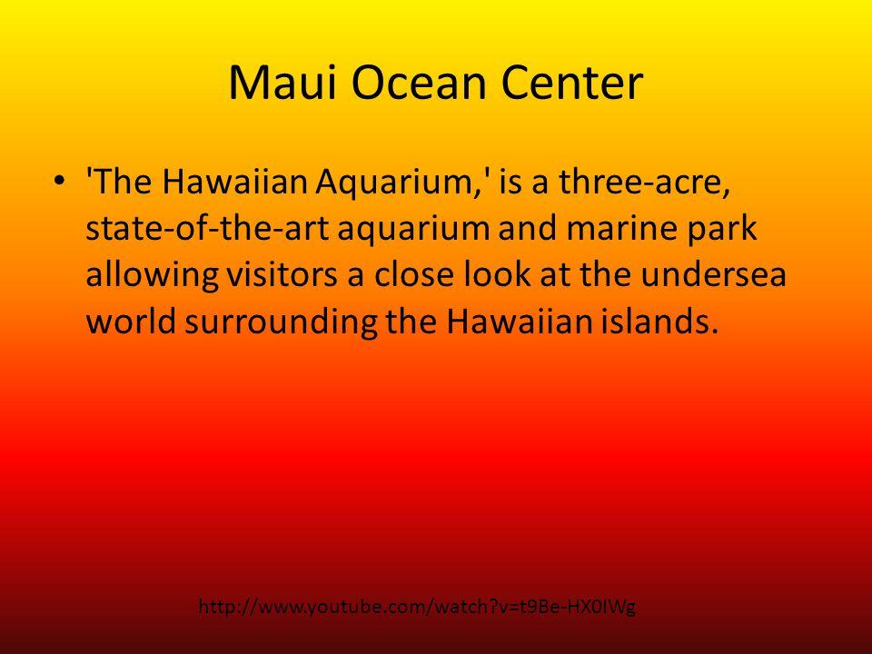 Maui Ocean Center The Hawaiian Aquarium, is a three-acre, state-of-the-art aquarium and marine park allowing visitors a close look at the undersea world surrounding the Hawaiian islands.