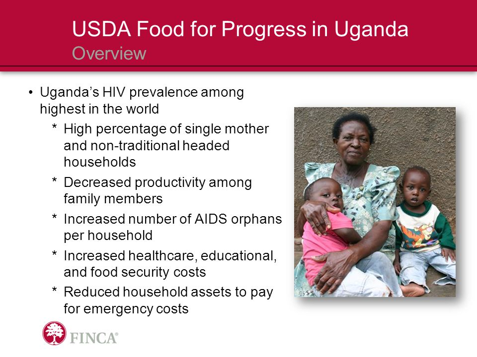 6Average household size, typically headed by a widowed or divorced woman 1.7Average family members lost to AIDS over 5 years 2.5Average number of AIDS orphans being supported <$1Average daily income per beneficiary USDA Food for Progress in Uganda Clients 80% Clients belonging to an HIV- affected household 49% Clients with 1+ HIV- positive household members
