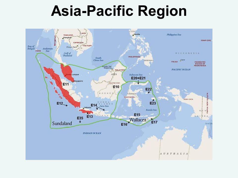 Asia-Pacific Region