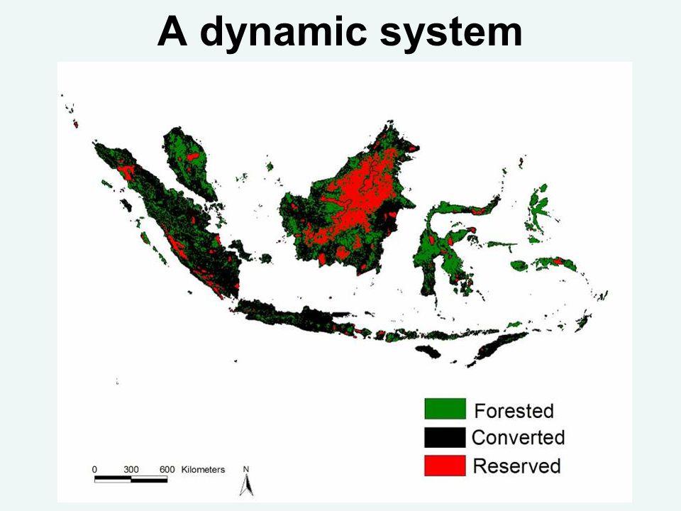 A dynamic system