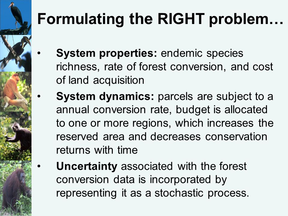 Formulating the RIGHT problem… System properties: endemic species richness, rate of forest conversion, and cost of land acquisition System dynamics: parcels are subject to a annual conversion rate, budget is allocated to one or more regions, which increases the reserved area and decreases conservation returns with time Uncertainty associated with the forest conversion data is incorporated by representing it as a stochastic process.