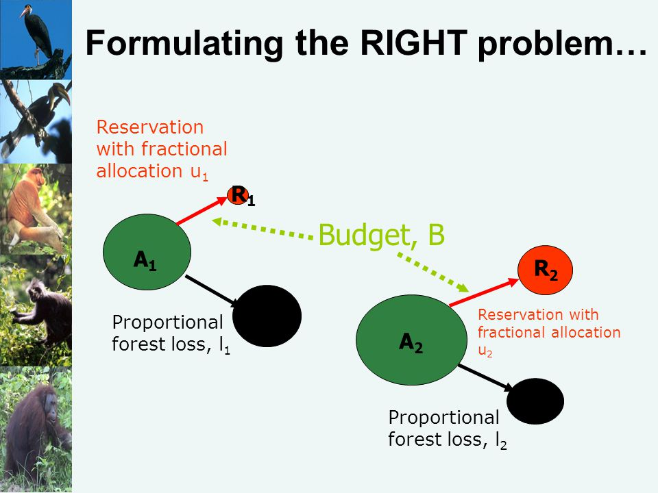 Formulating the RIGHT problem… Proportional forest loss, l 1 Reservation with fractional allocation u 1 Proportional forest loss, l 2 Reservation with fractional allocation u 2 Budget, B R1R1 A1A1 R2R2 L1L1 A2A2 L2L2