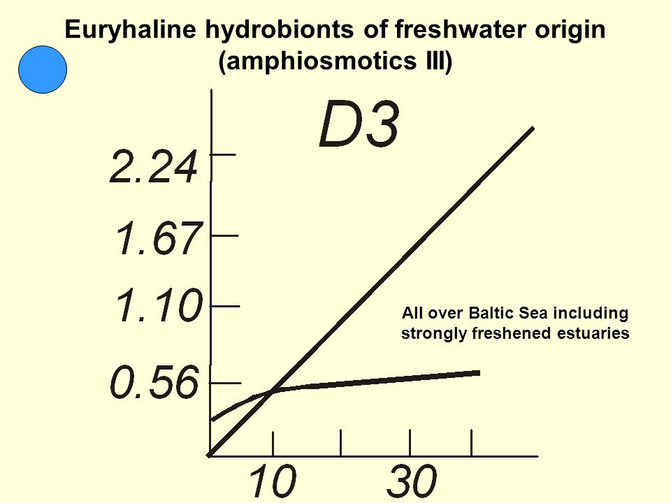 Euryhaline hydrobionts of freshwater origin (amphiosmotics III) All over Baltic Sea including strongly freshened estuaries