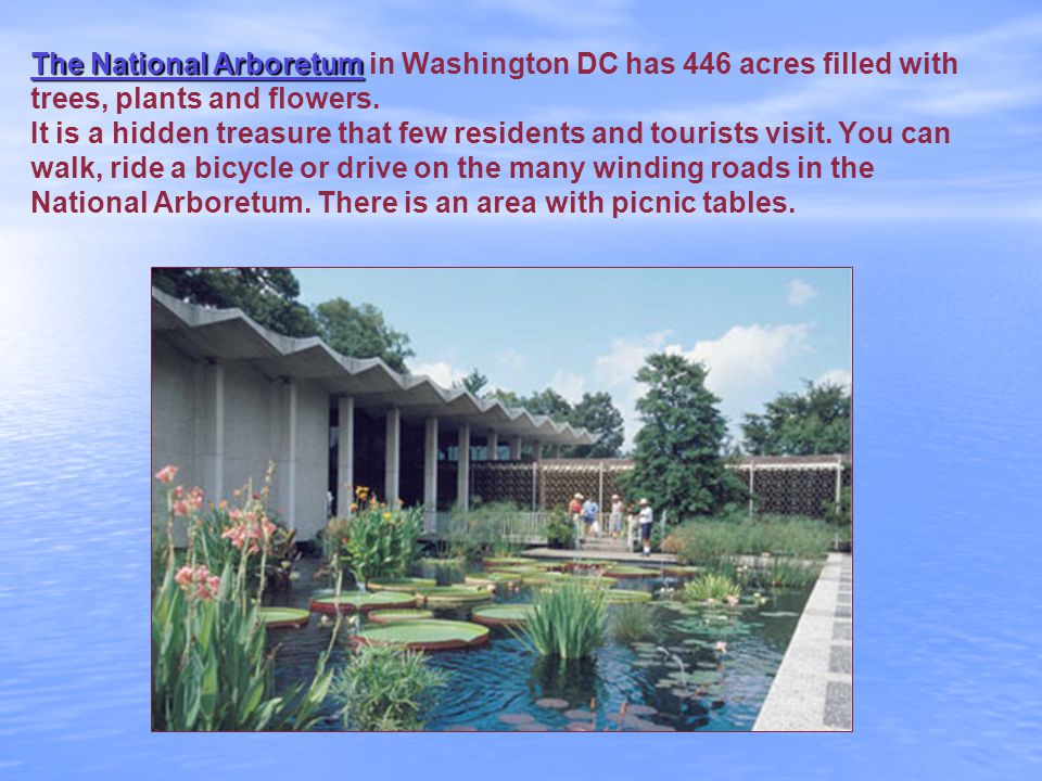 The National Arboretum The National Arboretum in Washington DC has 446 acres filled with trees, plants and flowers.