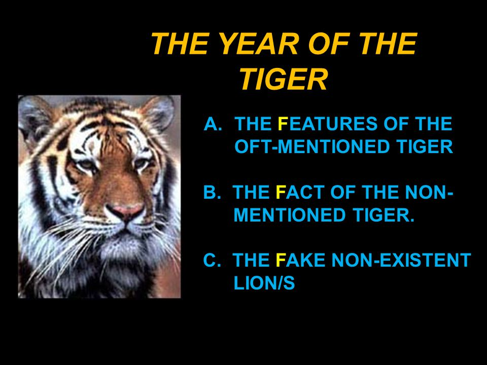 A. THE FEATURES OF THE OFT- MENTIONED TIGER. 1. ITS CAT MEMBERSHIP
