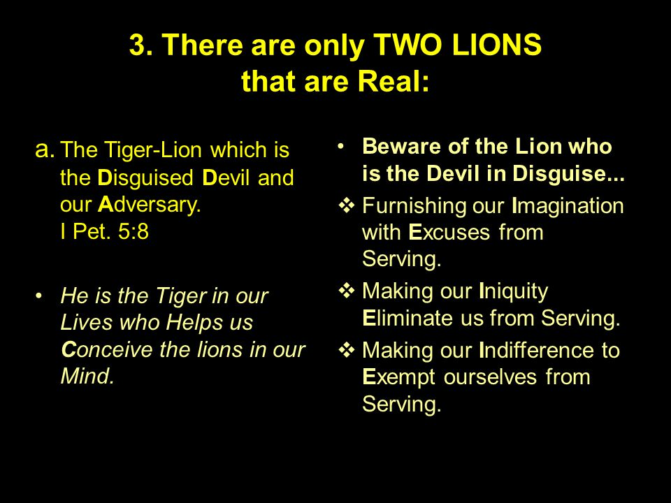 3. There are only TWO LIONS that are Real: a.
