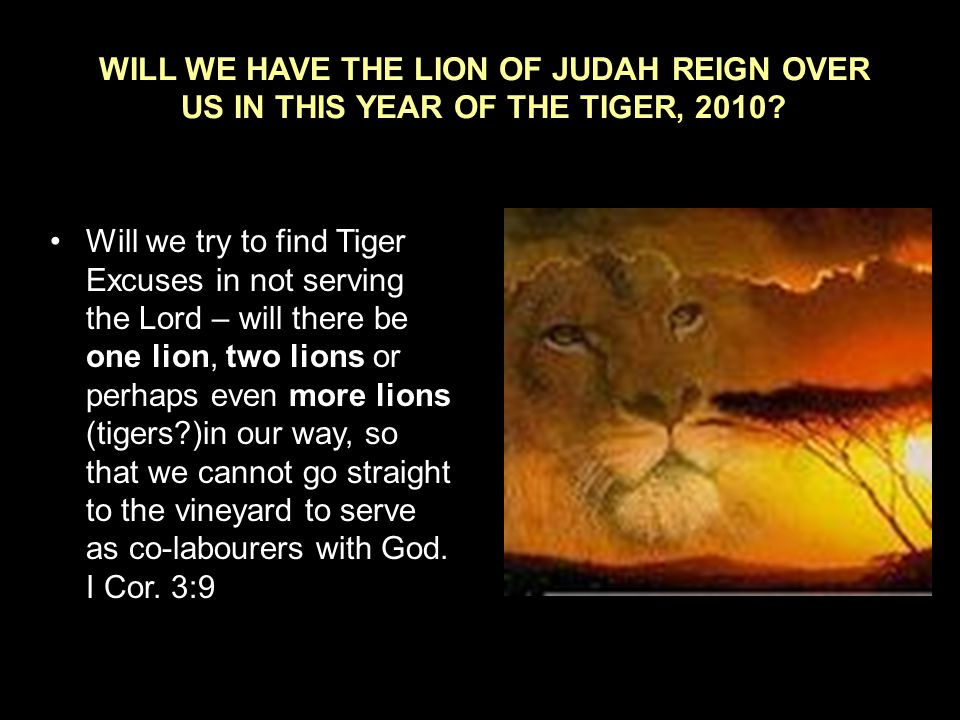 WILL WE HAVE THE LION OF JUDAH REIGN OVER US IN THIS YEAR OF THE TIGER, 2010.