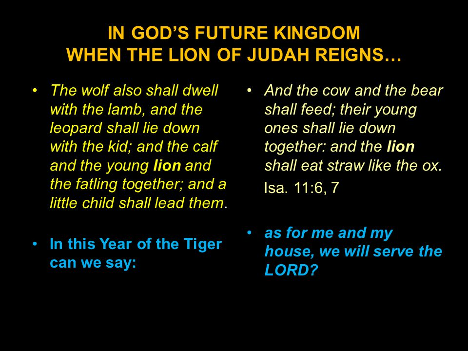 IN GOD'S FUTURE KINGDOM WHEN THE LION OF JUDAH REIGNS… The wolf also shall dwell with the lamb, and the leopard shall lie down with the kid; and the calf and the young lion and the fatling together; and a little child shall lead them.