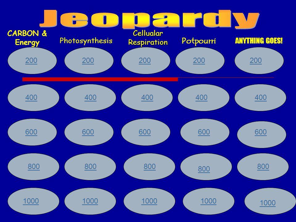200 400 600 800 1000 200 400 600 800 1000 CARBON & Energy Photosynthesis Cellualar Respiration Potpourri ANYTHING GOES.