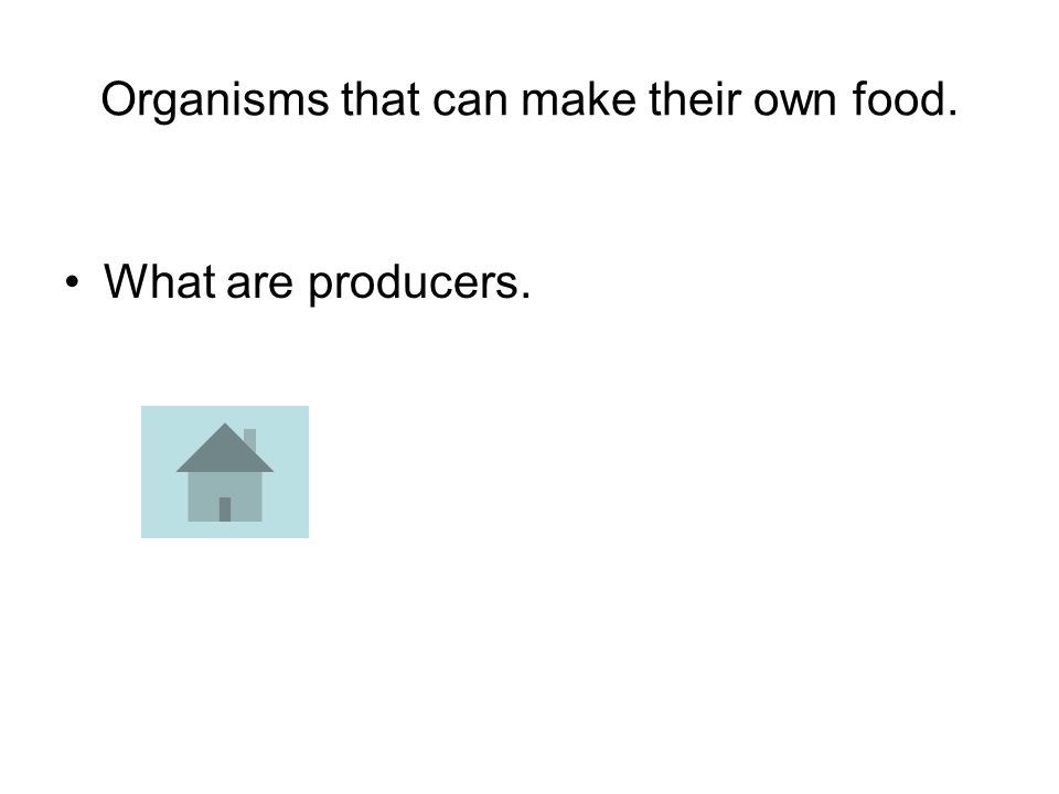 Organisms that can make their own food. What are producers.