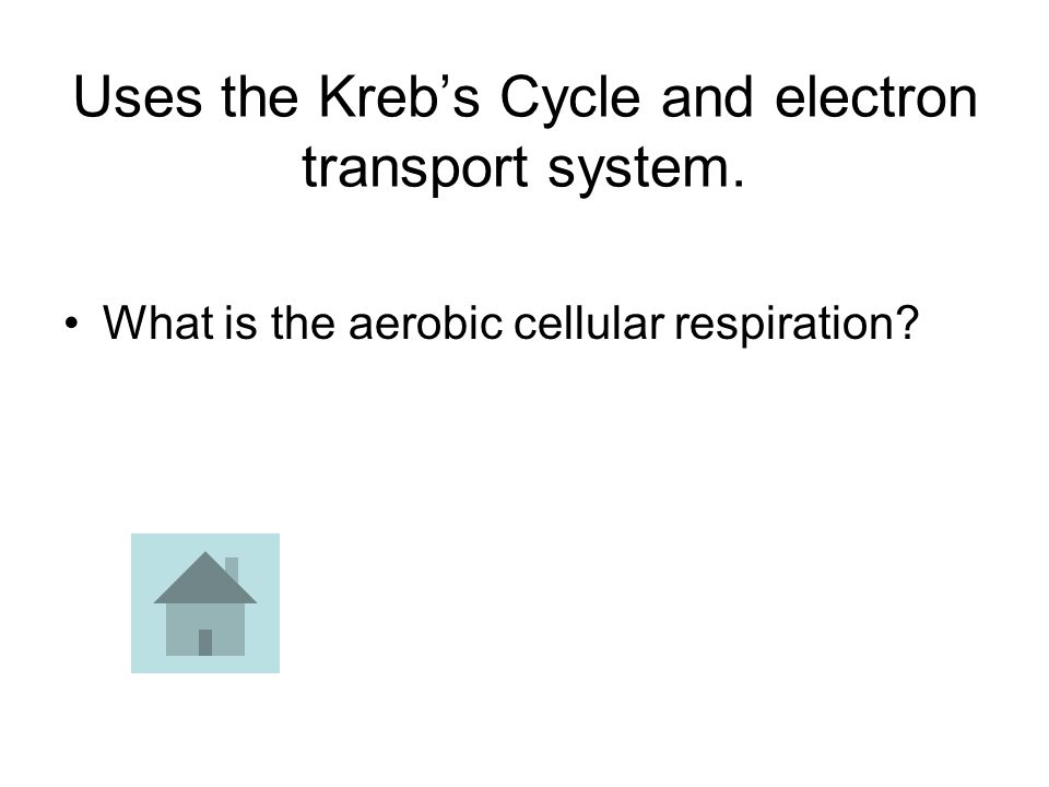 Uses the Kreb's Cycle and electron transport system. What is the aerobic cellular respiration?