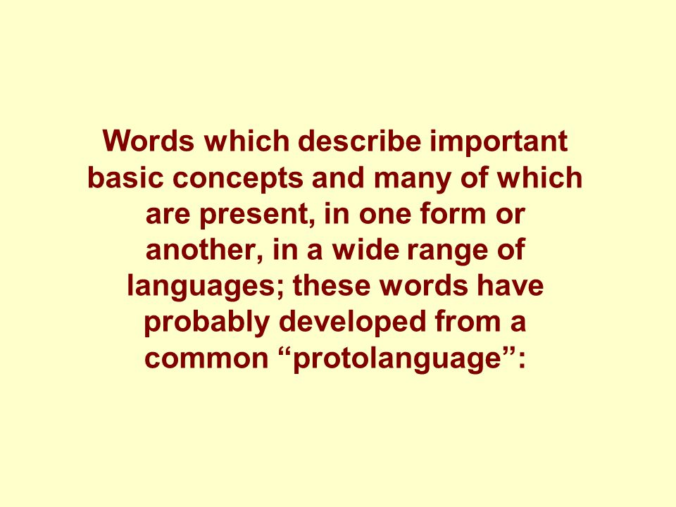 Words which describe important basic concepts and many of which are present, in one form or another, in a wide range of languages; these words have probably developed from a common protolanguage :