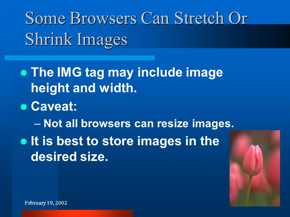 February 19, 200225 Some Browsers Can Stretch Or Shrink Images The IMG tag may include image height and width.