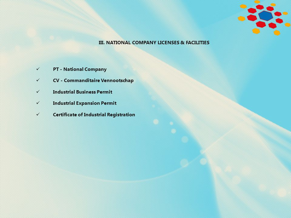 III. NATIONAL COMPANY LICENSES & FACILITIES PT - National Company CV - Commanditaire Vennootschap Industrial Business Permit Industrial Expansion Perm