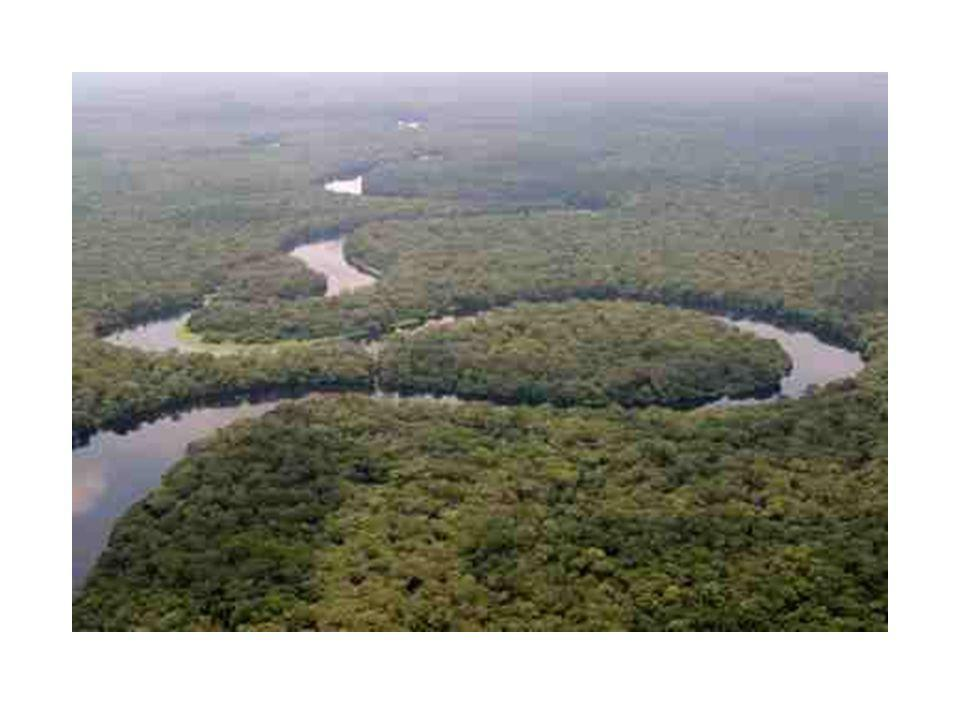 African Features The Congo is the largest river in Western Central Africa.