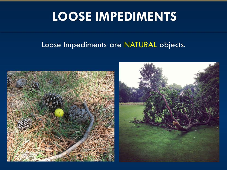 LOOSE IMPEDIMENTS Loose Impediments are NATURAL objects.