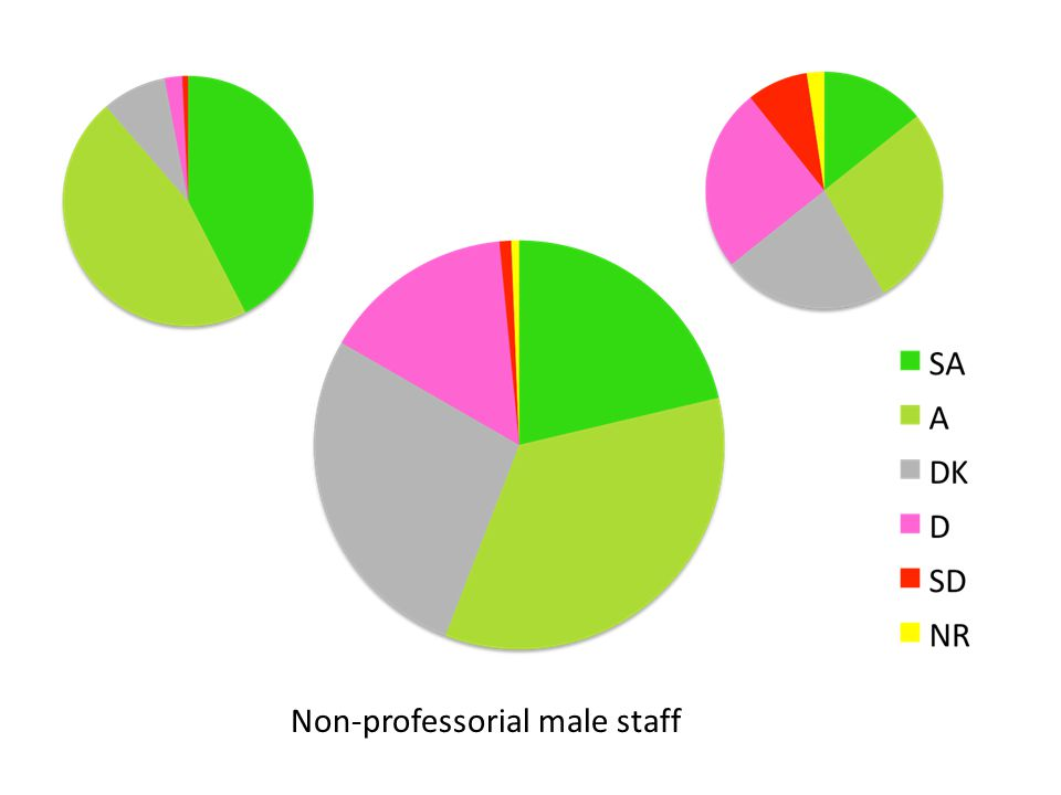 Non-professorial male staff